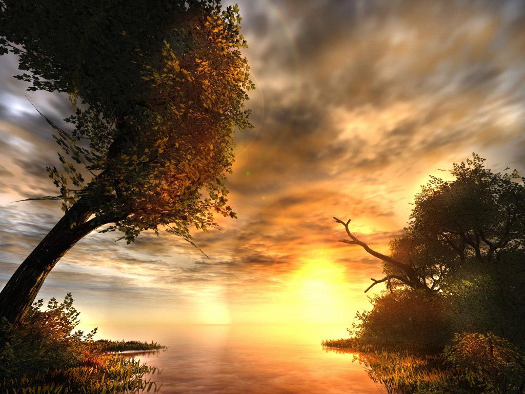 متن غروب ساحل دریا صفحه اصلي - گالري تصاویر - غروب