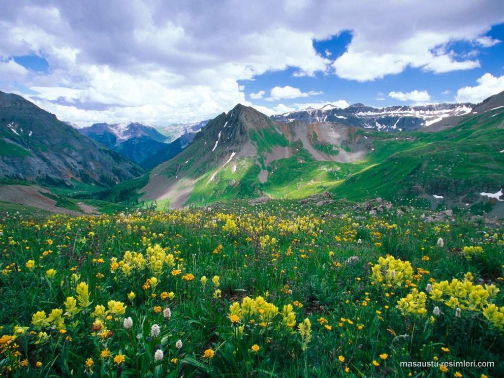طبیعت زیبای زیبا