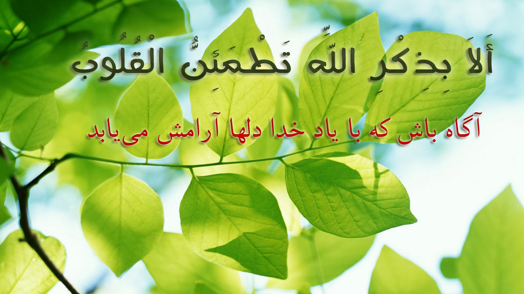 Image result for ?تصویر آرام?