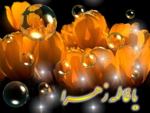 تولد حضرت زهرا علیها السلام مبارک . سیدعلی افشاری