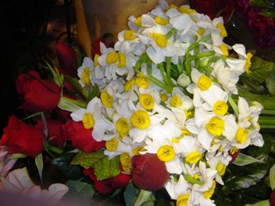 اين گل تقديم به شما دوست خوبم ...