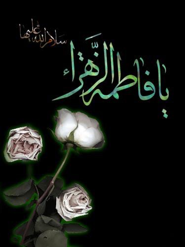 آلبوم تصویری شهادت حضرت فاطمه الزهرا (س)